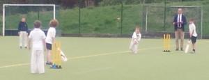 Capture cricket 2